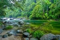 Mossman Gorge 1