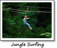Optional - Jungle Surfing