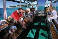 Glass Bottom Boat Tour Green Island
