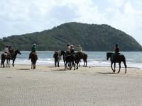 Cape Trib Beach Horse Rides