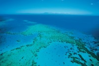 Nautilus Helicopters Cairns Reef Cruise Packages