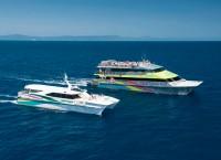 Big Cat Green Island Tours