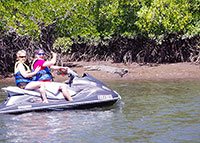 North QLD Watersports - Jet Ski