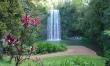 Atherton Tablelands / Waterfalls