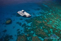 Great Adventures - Outer Barrier Reef Pontoon