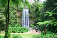 Barefoot Tours, Millaa Millaa Falls