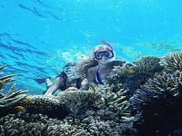 Down Under Dive Cairns Dive Course PADI