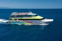 Big Cat - Green Island