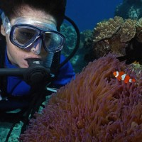 Reef Encounter Top Deck Club