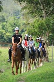 Mount-N-Ride Adventures - Horse Riding