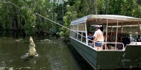 Hartleys Crocodile Adventures - Half Day Package