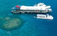 reef magic marine world