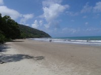 Cape Tribulation beach