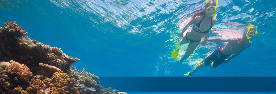 Http Www Great Barrier Reef Com Au Information For Kids